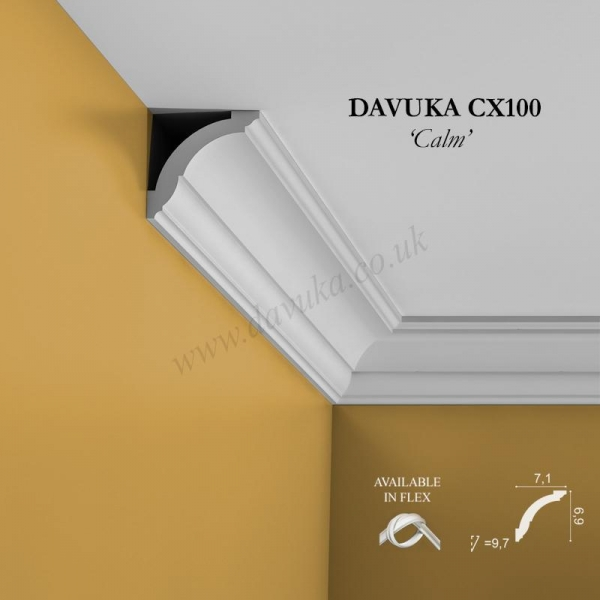 Profile of CX100 coving